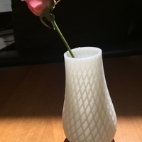 Small Spiral Vase 3D Printing 22045