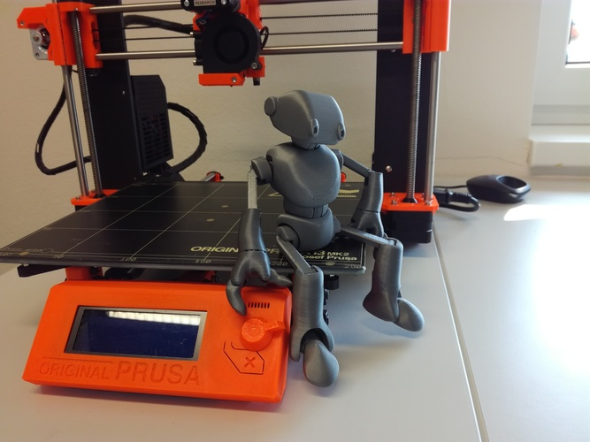 Ankly Robot - 3d Printed Assembled 3D Print 22295