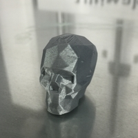 Small Low Poly Skull (1) 3D Printing 22435