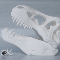 Small The T-Rex Skull 3D Printing 22603