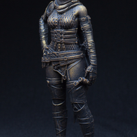 Small Female Ninja warrior 3D Printing 22817
