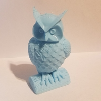 Small Owl 3D Printing 23130