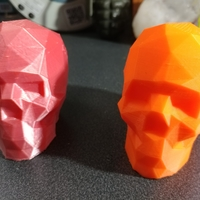 Small Low Poly Skull 3D Printing 23363