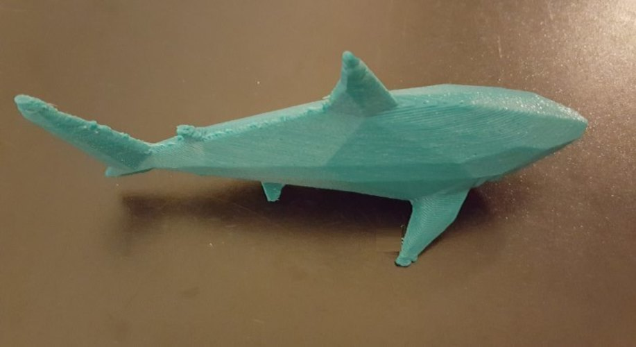 Low-Poly Shark 3D Print 23794