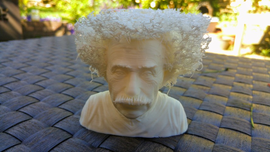Hairy Einstein 3D Print 23998