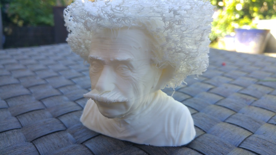 Hairy Einstein 3D Print 23999