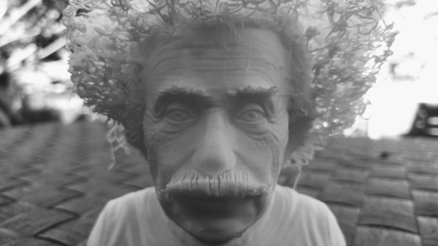 Hairy Einstein 3D Print 24000