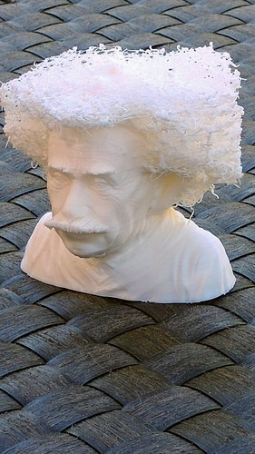 Hairy Einstein 3D Print 24001