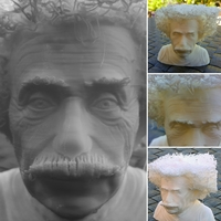 Small Hairy Einstein 3D Printing 24002