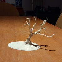 Small Wanaka Tree 3D Printing 24063