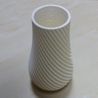 Small Spiral Vase 3D Printing 24229