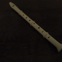 Small Recorder (Music instrument) 3D Printing 24475