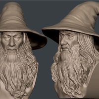 Small Gandalf Bust 3D Printing 24589