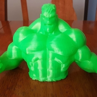 Small  Hulk Piggy Bank 3D Printing 24604