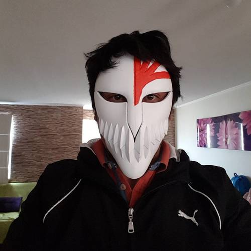 Bleach Mask 3D Print 24608