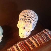 Small Skull lamps - Voronoi Style 3D Printing 2461