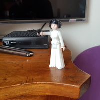 Small Princess leia 3D Printing 24676