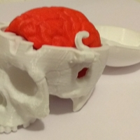 Small Boneheads: Skull Box w/ Brain - via 3DKitbash.com 3D Printing 25061