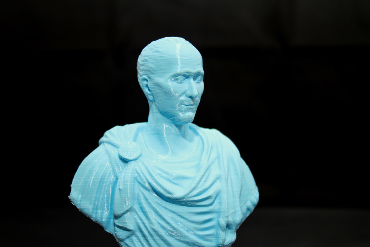 Julius Caesar (scan the world) 3D Print 25340