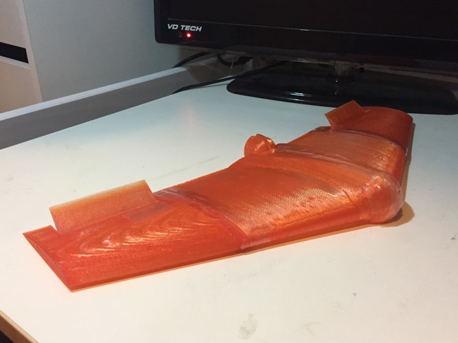 Fully Printed Flying Wing 3D Print 25708