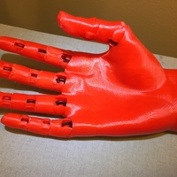 Small Jointed Hand 3D Printing 27277