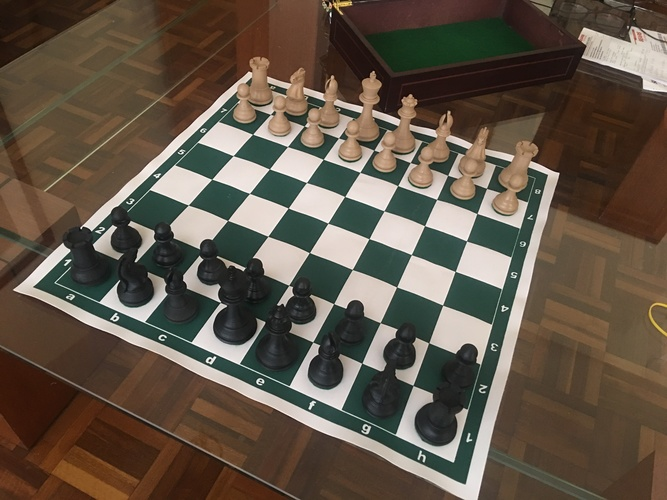 Weighted Tournament Chess Game Set 3D Print 28213