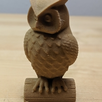 Small Owl 3D Printing 34448