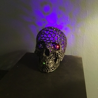 Small Skull lamps - Voronoi Style 3D Printing 34711
