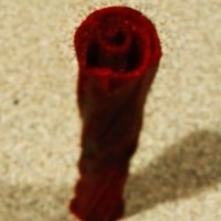 Small Twisted Rose Vase 3D Printing 3580