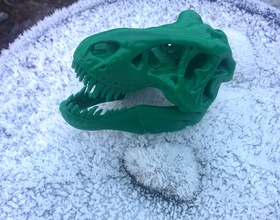 Pin The T-Rex Skull 3D Print 3608