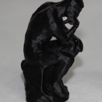 Small The Thinker 3D Printing 3675