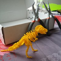 Small DinoPuzzle 3D Printing 3699