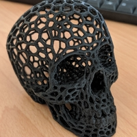 Small Skull lamps - Voronoi Style 3D Printing 37775