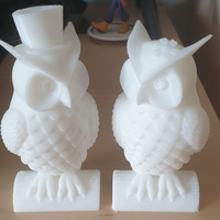 Small His_and_Her_Owls 3D Printing 39387