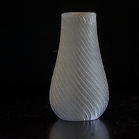 Small Spiral Vase 3D Printing 4189