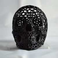 Small Skull lamps - Voronoi Style 3D Printing 4372