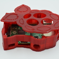 Small Raspberry-shaped Raspberry Pi Case 3D Printing 5652
