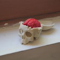Small Boneheads: Skull Box w/ Brain - via 3DKitbash.com 3D Printing 592