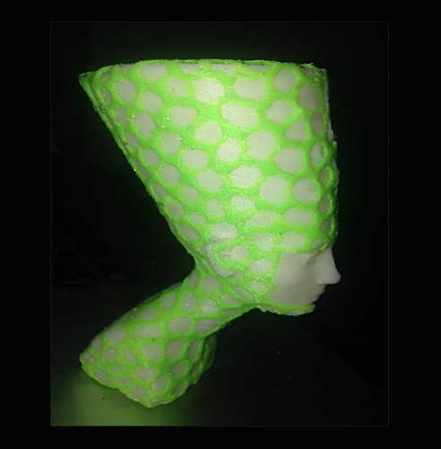 Nefertiti-Dual-color 3D Print 6607