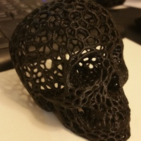 Small Skull lamps - Voronoi Style 3D Printing 6690