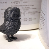 Small Owl 3D Printing 6727