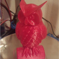 Small Owl 3D Printing 6928