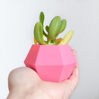 Small Hexagon Planter 3D Printing 6975