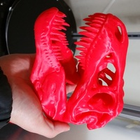 Small The T-Rex Skull 3D Printing 7192