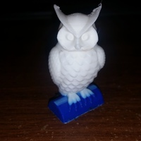 Small Owl 3D Printing 7312