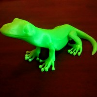 Small Little Lizard 3D Printing 755