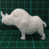 Small Stumpy the Rhino 3D Printing 7987