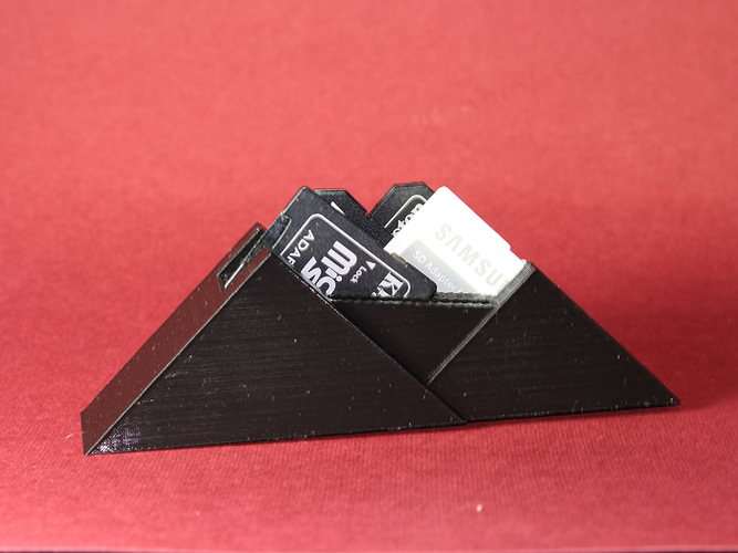 SD Card Mountain 3D Print 8030