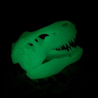 Small The T-Rex Skull 3D Printing 8362