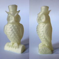 Small Owl 3D Printing 8810